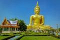 Giant Sitting Buddha Statue. Royalty Free Stock Photo