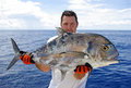 Giant trevally Royalty Free Stock Photo
