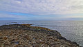 Giants Causeway early morning low tide Royalty Free Stock Photo