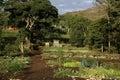 Gibb's farm,