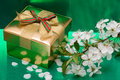 Gift box with flowers Royalty Free Stock Image