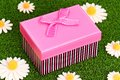 Gift box on grass Royalty Free Stock Photo