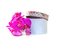 Gift box with a pink orchid on white background Stock Images