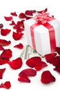 Gift box, rose petals on white background. Royalty Free Stock Images