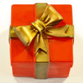Gift box shaped dog toy closeup of squeaky like with gold ribbon Royalty Free Stock Photo