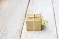 Gift box wrapped in craft paper tied with twine, tender small green flower, top view Royalty Free Stock Photo