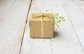 Gift box wrapped in craft paper tied with twine, tender small green flower Royalty Free Stock Photo