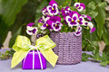 Gift with bright green bow and purple pansies backround copyspace Royalty Free Stock Photos