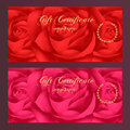 Gift certificate, Voucher, Coupon, Reward / Gift card template with rose (flowers pattern). Set of floral feminine background