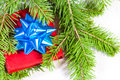 Gift and christmas tree Stock Image