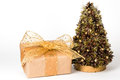 Gift and Christmas tree Stock Photography