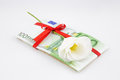 Gift of money with flower for celebration eurozone currency Stock Image