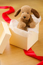 Gift puppy toy stuffed in box Royalty Free Stock Image