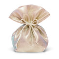 Gift sack. Royalty Free Stock Photo