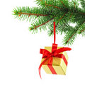Gift wrapped present on a spruce brunch Stock Images