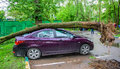 Gigantic toppled tree with huge roots crushed parked car as a result of the severe hurricane winds in one of courtyards of Moscow