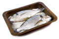 Gilt head sea bream baked in salt Royalty Free Stock Photo