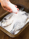 Gilt head sea bream baked in salt Royalty Free Stock Image