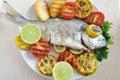 Gilt head Sea bream Fish