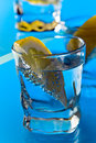 Gin with lemon on a glass table alcohol drink Stock Photos