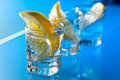 Gin with lemon on a glass table alcohol drink Royalty Free Stock Photos