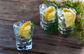 Gin with lemon and ice on a old wooden table Stock Image