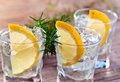 Gin with lemon and ice on a old wooden table Stock Photos