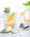 Gin lemon rosemary fizz cocktail with honey and fresh herbs Stock Photo