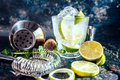 Gin tonic alcoholic cocktail with ice and mint. Cocktail drinks served at restaurant, pub or bar Royalty Free Stock Photo