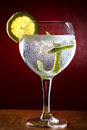 Gin tonic cocktail drink with lemon Stock Photo