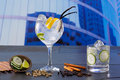 Gin tonic cocktail with spices in urban city buildings background Royalty Free Stock Images