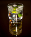 Gin and tonic an ice cold refreshing Royalty Free Stock Images