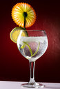 Gin tonic with lemon cocktail drink Stock Images