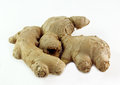 Ginger root on white background Royalty Free Stock Images
