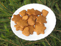 Ginger snap Royalty Free Stock Photo