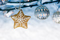 Gingerbread christmas star with holiday lights hanging on bare b Royalty Free Stock Photo
