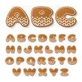 Gingerbread cookies alphabet