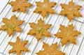 Gingerbread cookies fresh hot homemade star shaped on cooling rack Royalty Free Stock Photos