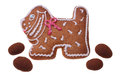 Gingerbread doggie the image of a with a red and white pattern and four chocolates on a white background Royalty Free Stock Image