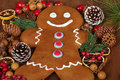 Gingerbread man with christmas potpourri Royalty Free Stock Images