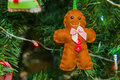 Gingerbread man closeup of handmade on the christmas tree Royalty Free Stock Photography