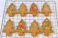Gingerbread tree cookies fresh hot homemade shaped on cooling rack Royalty Free Stock Photos
