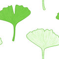 Gingko leaves seamless pattern interior wallpape biloba vector background Royalty Free Stock Images