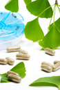 Ginkgo Biloba and pills planne Royalty Free Stock Images