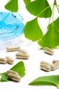 Ginkgo Biloba and pills planne Royalty Free Stock Photo