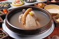 Ginseng chicken soup traditional korea food Stock Images