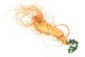 Ginseng root Royalty Free Stock Photo