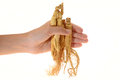 Ginseng roots hand holding some Stock Image