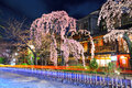Gion city with sakura tree at night Stock Photography