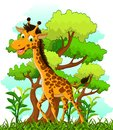 Giraffe cartoon on forest background illustration of Stock Photo